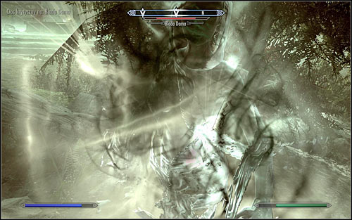 The second method is imprisoning the Pale Lady - The Pale Lady | Side quests - Side quests - The Elder Scrolls V: Skyrim Game Guide