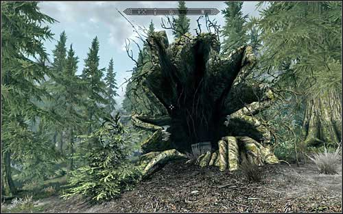 There, at the bottom of the mountains, inside a tree trunk you will find the chest (screen above) - Treasure Maps (I) | Side quests - Side quests - The Elder Scrolls V: Skyrim Game Guide