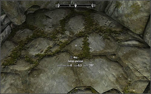 Following Arniels hint, head north - Under Saarthal - p. 1 | Side quests - Side quests - The Elder Scrolls V: Skyrim Game Guide