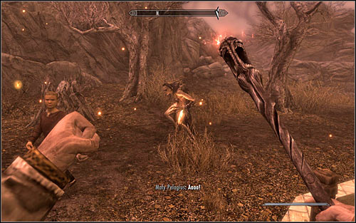Now you traditionally need to hit Pelagius with a magic projectile - The Mind of Madness - p. 2 - Daedric quests - The Elder Scrolls V: Skyrim Game Guide