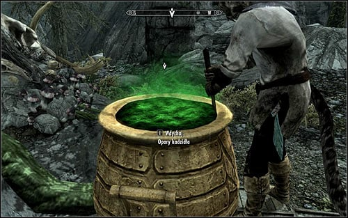 Wait for the Khajiit to throw the ingredients into the cauldron and stir them properly - The Only Cure - p. 1 - Daedric quests - The Elder Scrolls V: Skyrim Game Guide