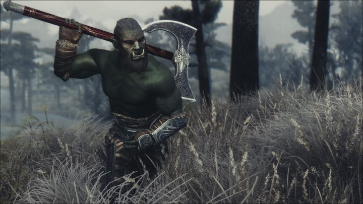 Immersive Weapons comes from the same people who gave us Immersive Armors, which guarantees top-notch quality - Immersive Weapons | Mods - Mods - The Elder Scrolls V: Skyrim Game Guide