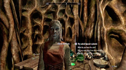 Return to the apothecary and tell Elynea that everything's done - Healing a House - Side missions - Tel Mithryn - The Elder Scrolls V: Skyrim - Dragonborn - Game Guide and Walkthrough