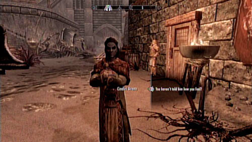 In order to receive this mission, you have to speak with the wife of Adril Arano - Cindiri Arano - Locate Cindiri's Folio from the wreck of the Strident Squall - Other missions - The Elder Scrolls V: Skyrim - Dragonborn - Game Guide and Walkthrough