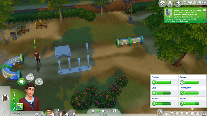 Pet training in sims 4 cats and dogs the sims 4 game guide your pet can also be trained on an obstacle training course you can build it solutioingenieria Gallery