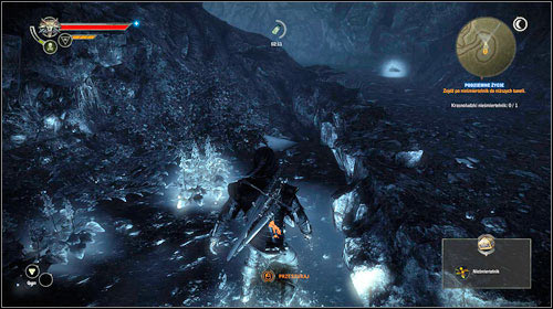 Now you can safely pick up the immortelle - Subterranean Life - Main missions - The Witcher 2: Assassins of Kings Game Guide