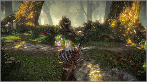 Head through the woods to the south, towards the elven ruins (M8, 18) - The Rose of Remembrance - Main missions - The Witcher 2: Assassins of Kings Game Guide