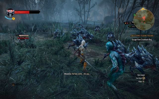 When you play as Ciri, run forward, you wont gain experience anyway - Ladies of the Wood - main quest - Crookback Bog - The Witcher 3: Wild Hunt Game Guide & Walkthrough
