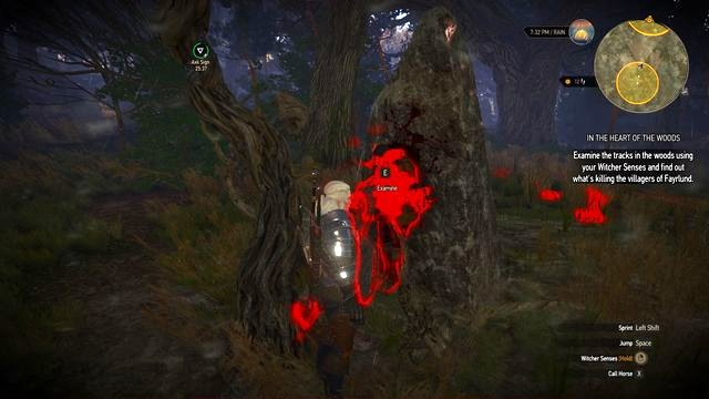To learn with what you are dealing you must follow the trail into the forest. - Side quests in Kaer Muire - Kaer Muire - The Witcher 3: Wild Hunt Game Guide & Walkthrough