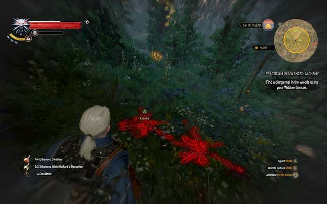 The plants remains in the forest - Practicum in Advanced Alchemy - side quest - Kaer Trolde - The Witcher 3: Wild Hunt Game Guide & Walkthrough