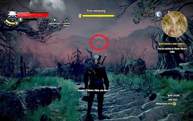 Master Mirror s riddle The Witcher 3 Wild Hunt Game Guide