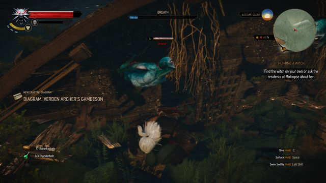 To reach the chest you must find a hole in the shipwreck. - Treasure hunt in Midcopse - Midcopse - The Witcher 3: Wild Hunt Game Guide & Walkthrough