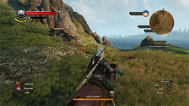 Try to examine from distance whether exploring a location is safe (are there any strong monsters guarding it) - Optional locations (question marks on the map) - Exploring the game world - The Witcher 3: Wild Hunt Game Guide & Walkthrough