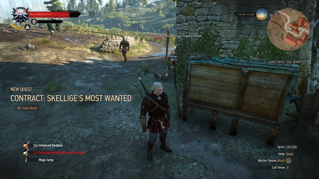 Contract: Skellige's Most Wanted - The Witcher 3: Wild Hunt