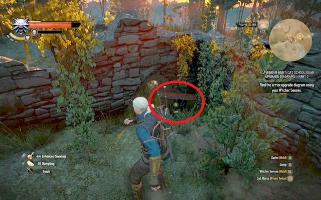 After defeating the elementals, approach the ruins from the south - Superior Cat School Gear - Cat School Gear - The Witcher 3: Wild Hunt Game Guide & Walkthrough