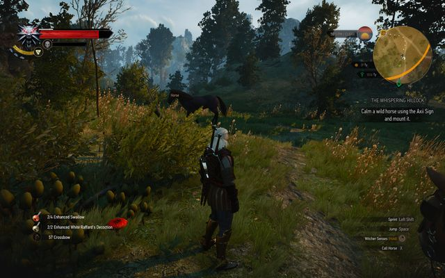 Pick any horse which you will take to the ghost - Side quests in Crookback Bog - Crookback Bog - The Witcher 3: Wild Hunt Game Guide & Walkthrough