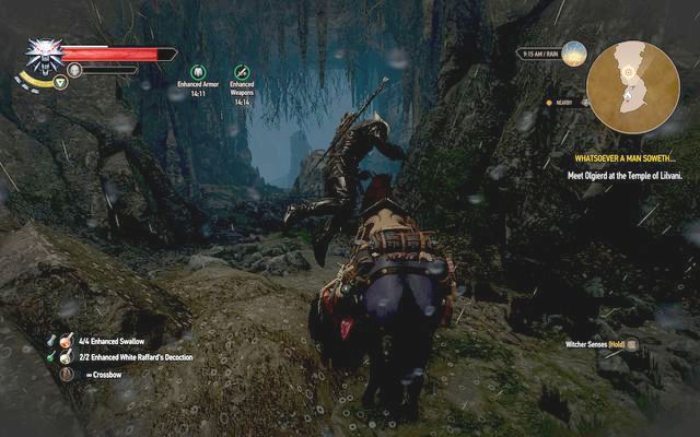 Get to the cave, two entrances lead inside - Whatsoever a Man Soweth... - Main quests - The Witcher 3: Wild Hunt Game Guide & Walkthrough