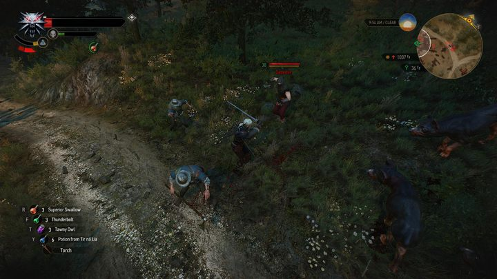 This modification introduces more enemies one can encounter on a trail - this sounds prosy, however, the creator of this mod has designed a special configuration menu, in which one can adjust the mod according to his preferences - Random Encounters | The best mods - The best mods - The Witcher 3: Wild Hunt Game Guide & Walkthrough