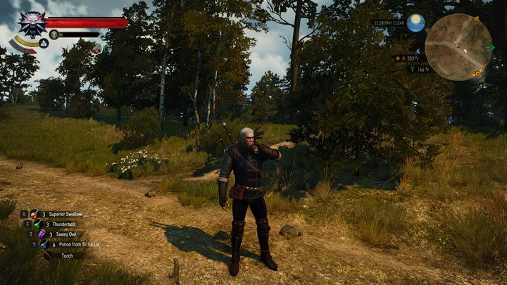 From now on, drinking potions, eating, gathering herbs, oiling the blades, mending and improving the swords and armor, as well as opening containers are now preceded with a proper animation - Extra Animations | The best mods - The best mods - The Witcher 3: Wild Hunt Game Guide & Walkthrough