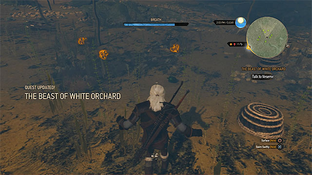 Buckthorn can be found diving so watch out for drowners - The Beast of White Orchard - main quest - Prologue and White Orchard - The Witcher 3: Wild Hunt Game Guide & Walkthrough