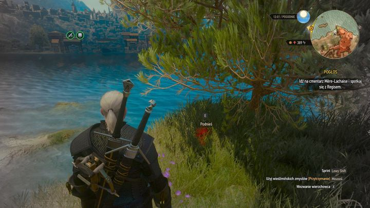 On the corpse, there is a journal. - Locations and descriptions of all treasure hunts - Witcher contracts and Treasure hunts quests - The Witcher 3: Blood and Wine Game Guide