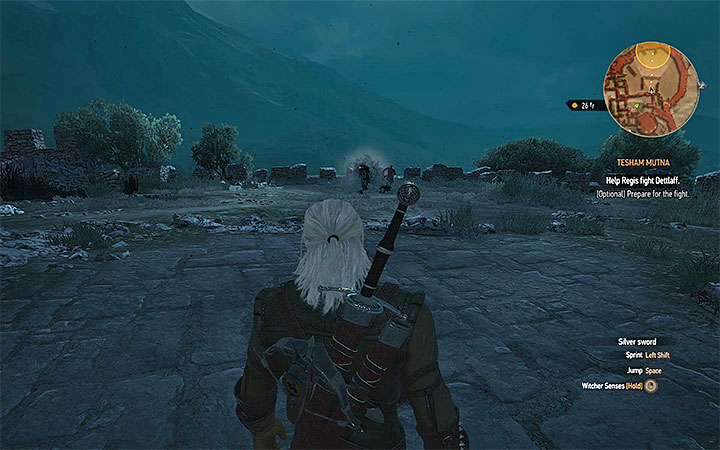 Move only once youre ready - Tesham Mutna - the final confrontation with Dettlaff - Main quests - The Witcher 3: Blood and Wine Game Guide