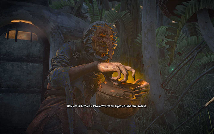 You will encounter the Wicked Witch soon after you arrive at the fairy land - Main quests bosses in The Witcher 3: Blood and Wine - All Boss Fights - The Witcher 3: Blood and Wine Game Guide