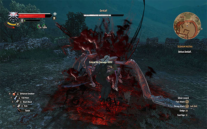 You should attack Dettlaff only when he lands on the arena - an example situation like that is shown on the above picture - Main quests bosses in The Witcher 3: Blood and Wine - All Boss Fights - The Witcher 3: Blood and Wine Game Guide