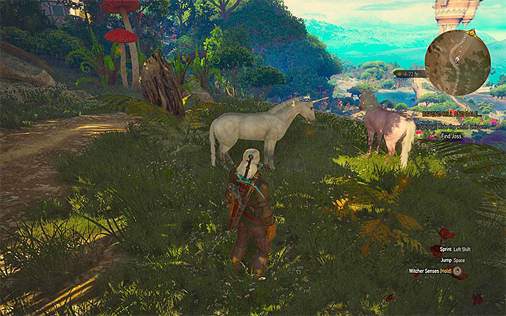 You can mount the unicorn in order to make traveling through the realm easier - Beyond Hill and Dale... - quest about finding Syanna - Main quests - The Witcher 3: Blood and Wine Game Guide
