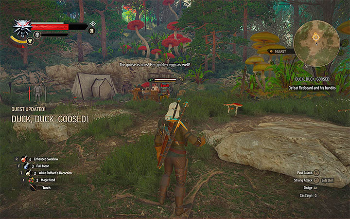 witcher 3 how to get the beyond hill and dale