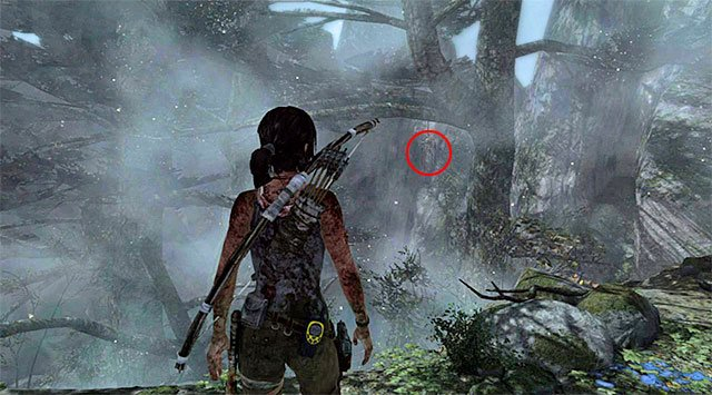 Stop as soon as she stands upright - Ghost Hunter - Collectibles: Coastal Forest - Tomb Raider - Game Guide and Walkthrough