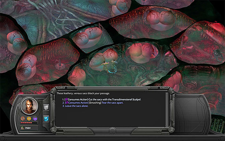 You can break through the central part of the map or reach the side Tongue Clusters - How to pass through the Nethermost Cavity in the Bloom and reach the Heart Interior? - Puzzles and additional activities - Torment: Tides of Numenera Game Guide