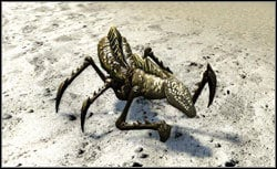 Giant Ant - Monsters - Bestiary - Two Worlds II - Game Guide and Walkthrough