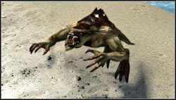 Werebeast - Monsters - Bestiary - Two Worlds II - Game Guide and Walkthrough